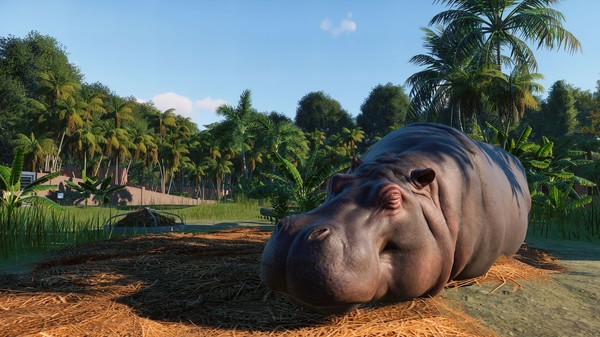 planet zoo hippo screenshot e3 2019 frontier developments release date november 2019 simulation game park omi koulas